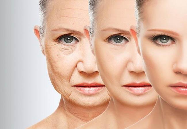 Thường xuyên sử dụng đậu đen xanh lòng sẽ giúp bạn làm chậm quá trình lão hóa