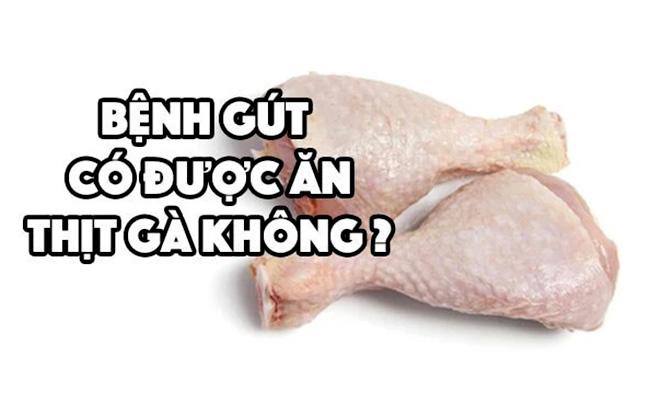 Giải đáp bệnh gút có ăn được thịt gà không?