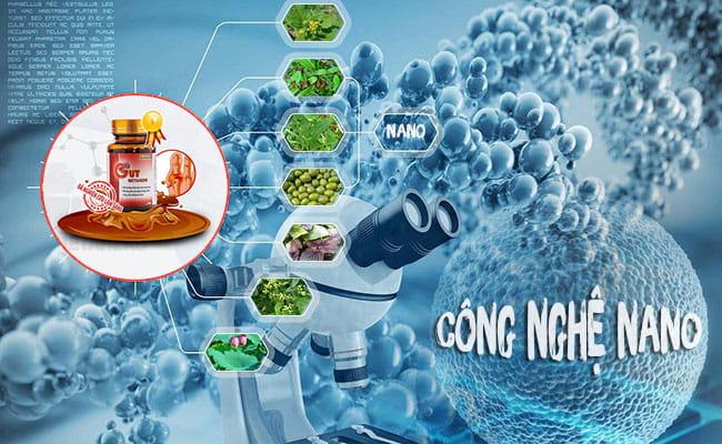 Thảo dược công nghệ cao hỗ trợ điều trị Gout