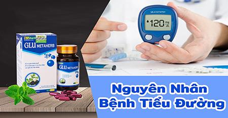 Nguyen nhan benh tieu duong 1