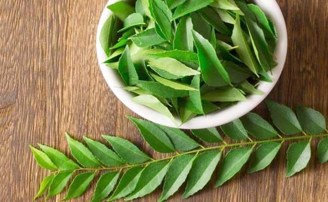 Lá neem Ấn Độ giúp cân bằng đường huyết