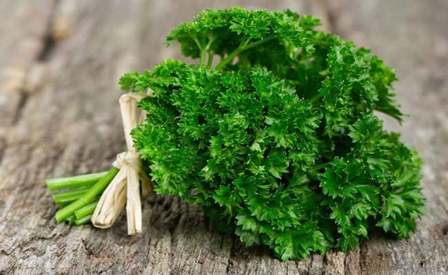 Rau mùi tây tốt cho người bệnh đau dạ dày