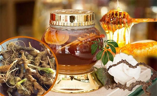 Tam thất mật ong chữa đau dạ dày
