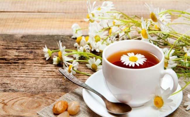 Uống trà hoa cúc giúp giảm đau dạ dày đáng kể