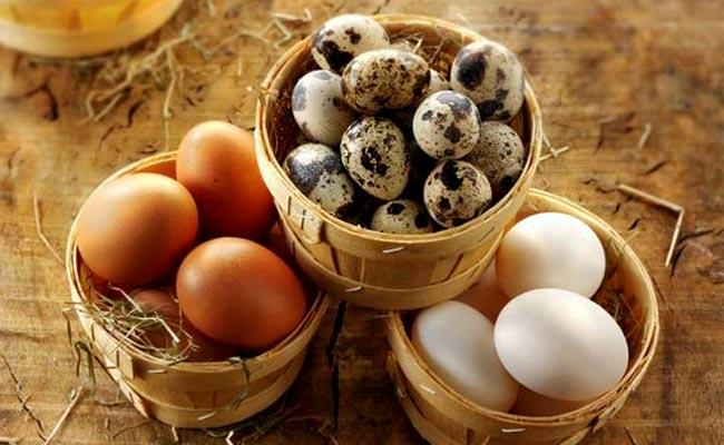 Người bệnh gút có ăn trứng được không