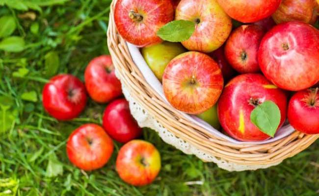 tiểu đường nên ăn trái cây gì