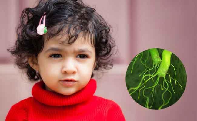 Vi khuẩn HP có thể là nguyên nhân gây đau dạ dày ở trẻ em