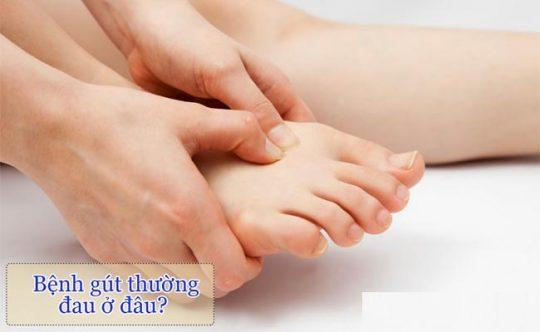 Bệnh gout đau ở đâu là câu hỏi của nhiều người