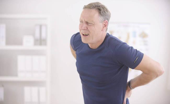 Người bị đau lưng mỏi gối do thận can suy nên sử dụng cây cẩu tích làm thuốc