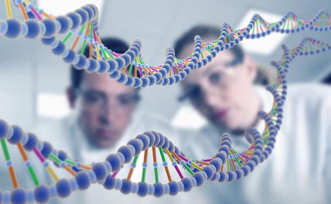 Bệnh gút có di truyền không