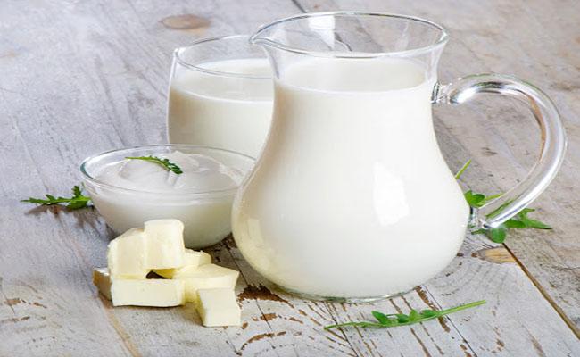Người bị bệnh gút có uống sữa được không
