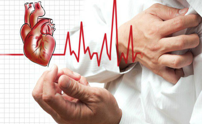 Nấm tốt cho tim mạch