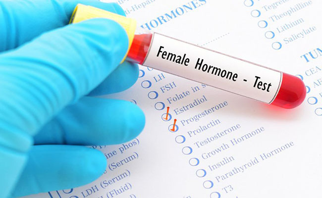 Estrogen