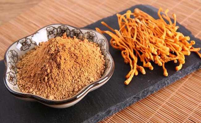 Đông trùng hạ thảo Đà Lạt có nhiều công dụng cho cơ thể