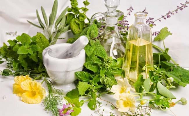 Dược liệu có sẵn rất nhiều trong tự nhiên