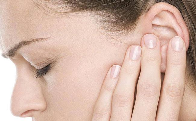 Hoàng đằng chân vịt chữa trị viêm tai