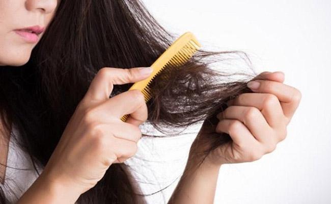 Trị rụng tóc bằng thạch vỹ